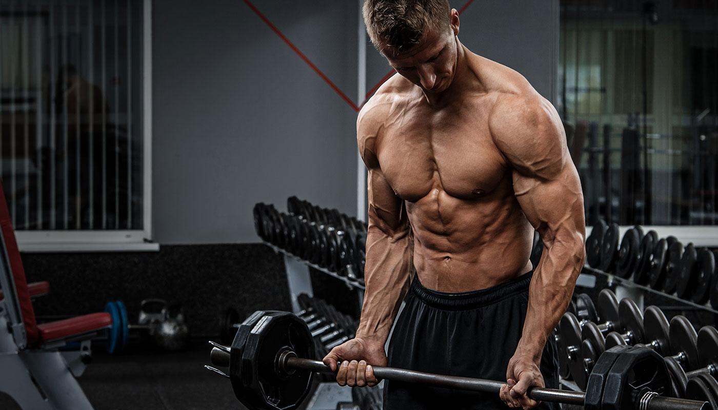 Best Bodybuilding Exercises To Complete – Mindylewis Wellness